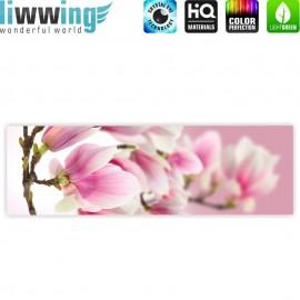 "liwwing (R) Marken Leinwandbild ""Pink Magnolia"" | Panorama | Magnolie Blumenranke Pflanzen Natur Orchidee Blume rosa"