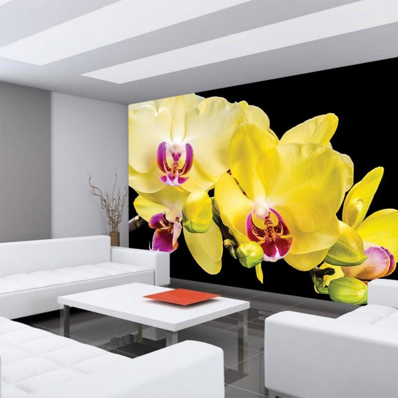vlies fototapete no 1470 vliestapete liwwing r. Black Bedroom Furniture Sets. Home Design Ideas
