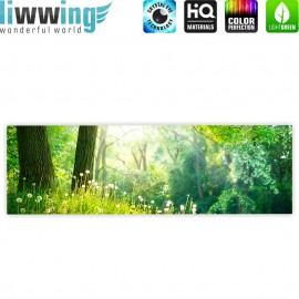 "liwwing (R) Marken Leinwandbild ""Sunny Forest "" | Panorama | Wald Bäume Natur Baum grün"