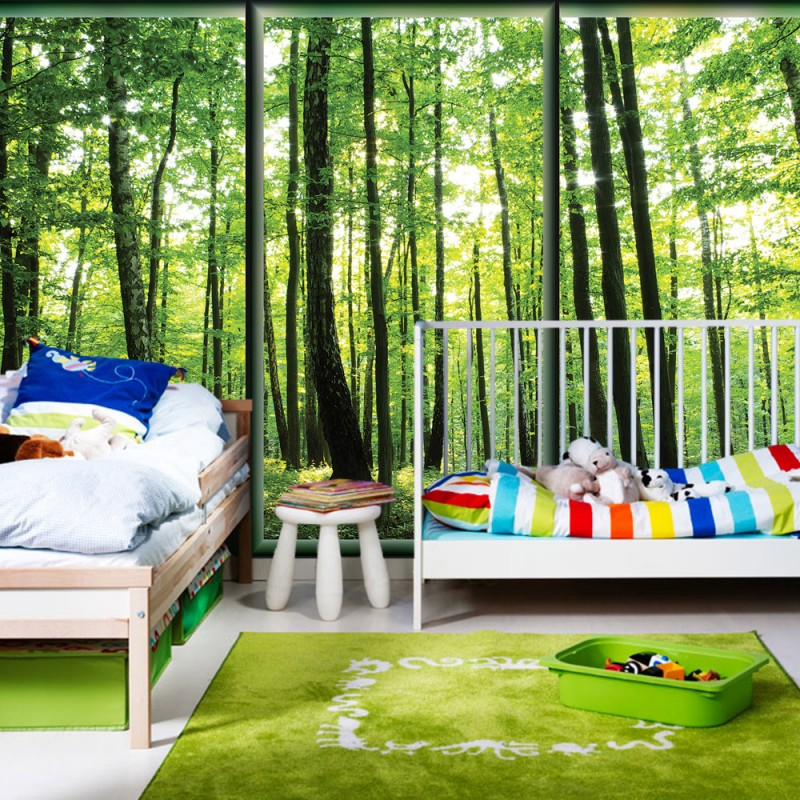 vlies fototapete no 1558 vliestapete liwwing r wald tapete w lder b ume natur rahmen gr n. Black Bedroom Furniture Sets. Home Design Ideas