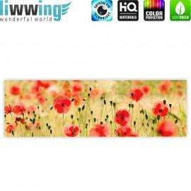 "liwwing (R) Marken Leinwandbild ""Dream of Poopies"" | Panorama | Romantik Mohn Feld Blumen Gras"