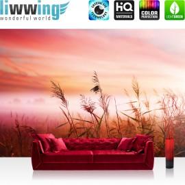 "Vlies Fototapete ""no. 1621"" | Sonnenaufgang Tapete Sonne Pflanzen Himmel rot | liwwing (R)"