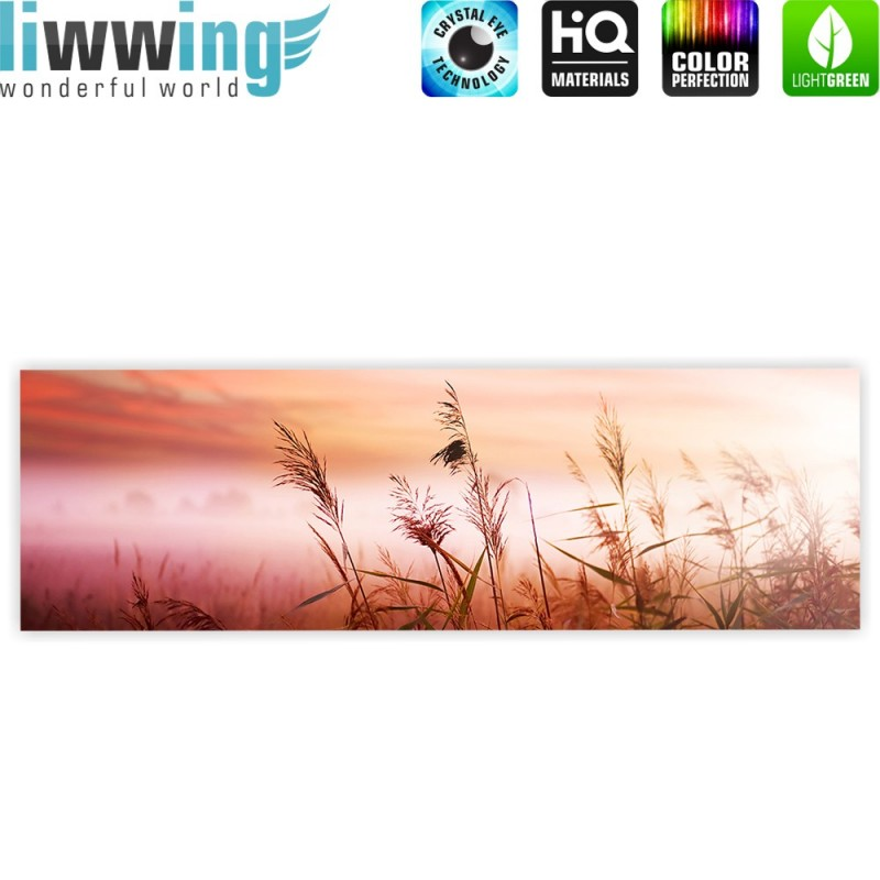 liwwing r marken leinwandbild pink dunes panorama sonnenaufgang meer strand d nen rosa. Black Bedroom Furniture Sets. Home Design Ideas