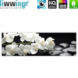 "liwwing (R) Marken Leinwandbild ""White Orchids an Black Stones"" | Panorama | Orchidee Blumen Blumenranke Rosa Natur"
