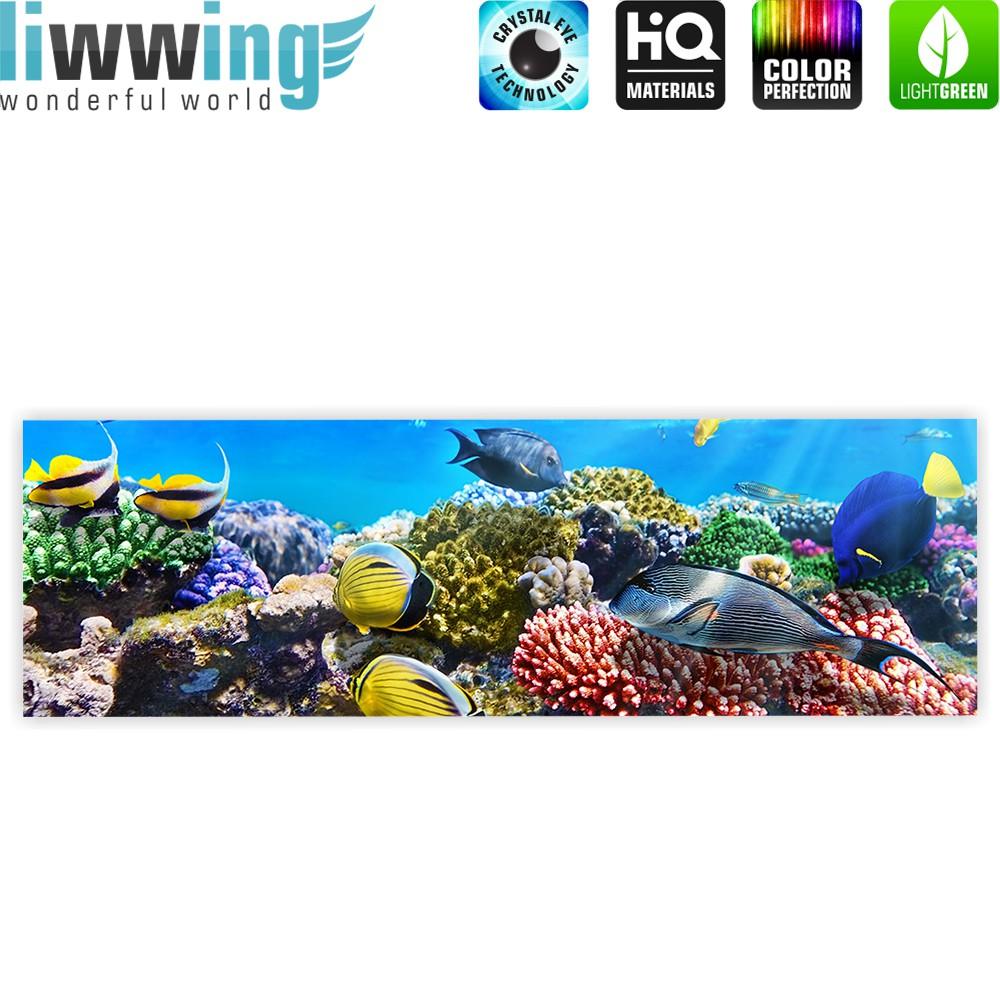 Berühmt Korallenriff Malvorlagen Ideen - Beispiel Business ...
