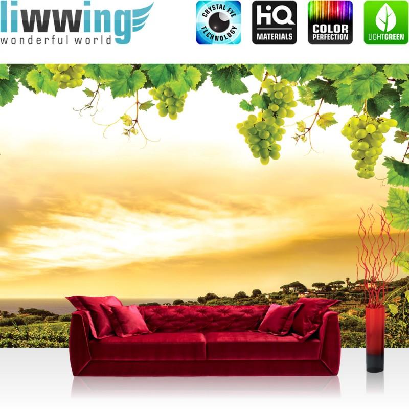 vlies fototapete no 1498 landschaft tapete landschaft weinberge weintrauben ebay. Black Bedroom Furniture Sets. Home Design Ideas