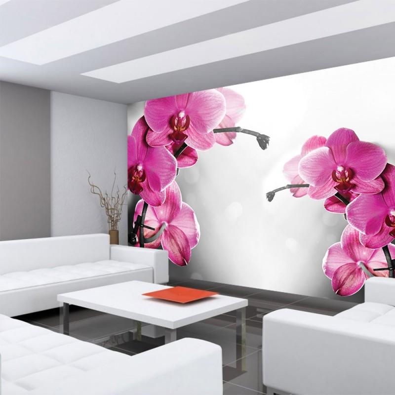 vlies fototapete no 1802 vliestapete liwwing r. Black Bedroom Furniture Sets. Home Design Ideas