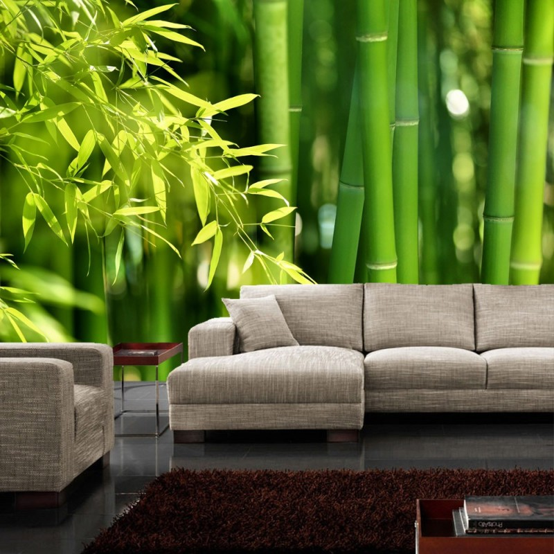 vlies fototapete far asia bamboo wald tapete bambus. Black Bedroom Furniture Sets. Home Design Ideas
