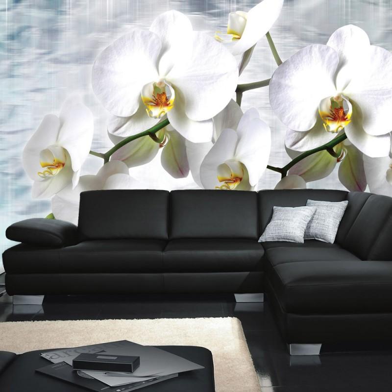 vlies fototapete no 1827 vliestapete liwwing r. Black Bedroom Furniture Sets. Home Design Ideas