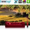 "Vlies Fototapete ""no. 1852"" | Wein Tapete Landschaft Weintrauben Feld grün | liwwing (R)"