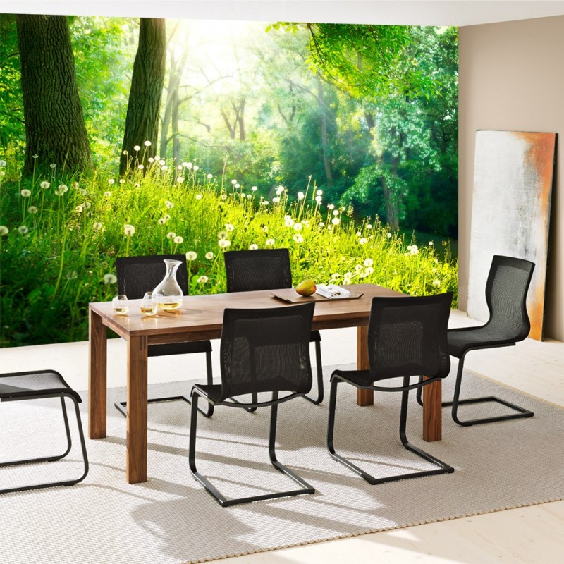 vlies fototapete sunny forest wald tapete wald b ume. Black Bedroom Furniture Sets. Home Design Ideas
