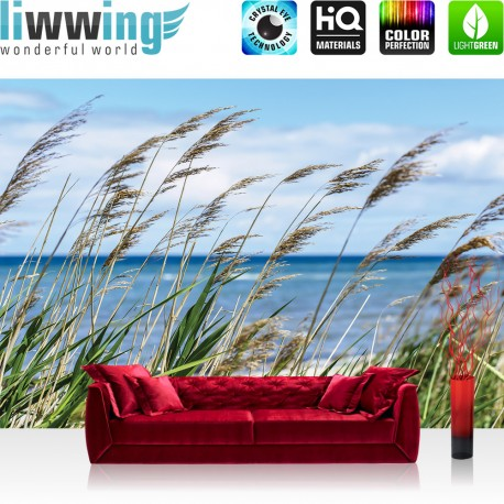"Vlies Fototapete ""no. 2201""   Landschaft Tapete Meer Strand Schilf Pflanzen Himmel blau   liwwing (R)"