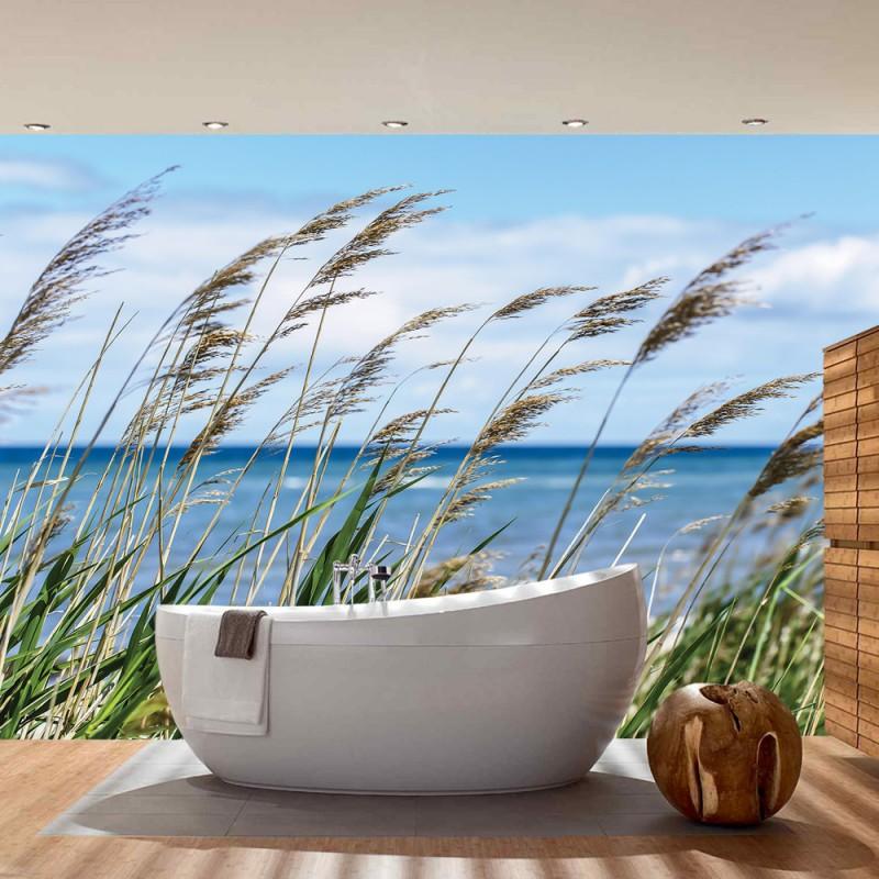 vlies fototapete no 2201 vliestapete liwwing r landschaft tapete meer strand schilf. Black Bedroom Furniture Sets. Home Design Ideas