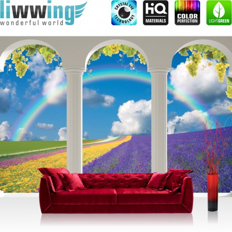 "Vlies Fototapete ""no. 2247"" | Landschaft Tapete Fenster Bogen Himmel Sonne Regenbogen Weintrauben weiß | liwwing (R)"