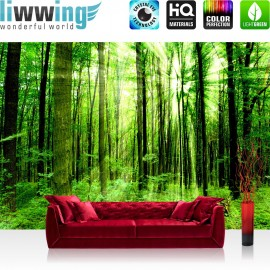 PREMIUM Fototapete - no. 61   Sunlight Forest   Wald Bäume Sonnenstrahlen grün Ruhe