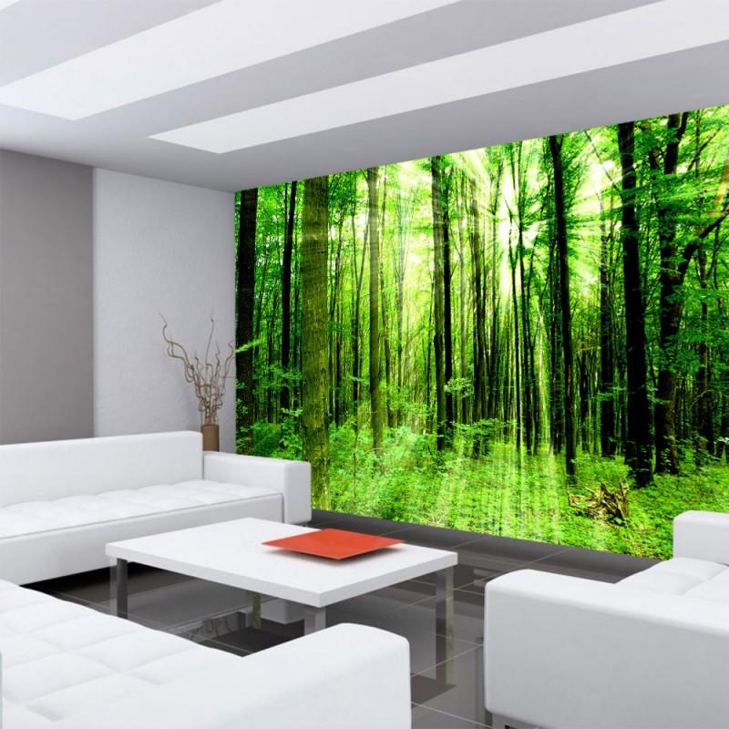 stunning fototapete wohnzimmer grun images. Black Bedroom Furniture Sets. Home Design Ideas
