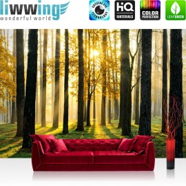"""Vlies Fototapete """"Sunlight Forest II""""   Wald Tapete Bäume Sonnenstrahlen grün Ruhe grün"""