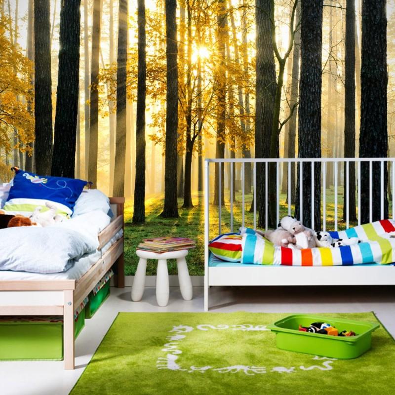 vlies fototapete sunlight forest ii wald tapete b ume. Black Bedroom Furniture Sets. Home Design Ideas