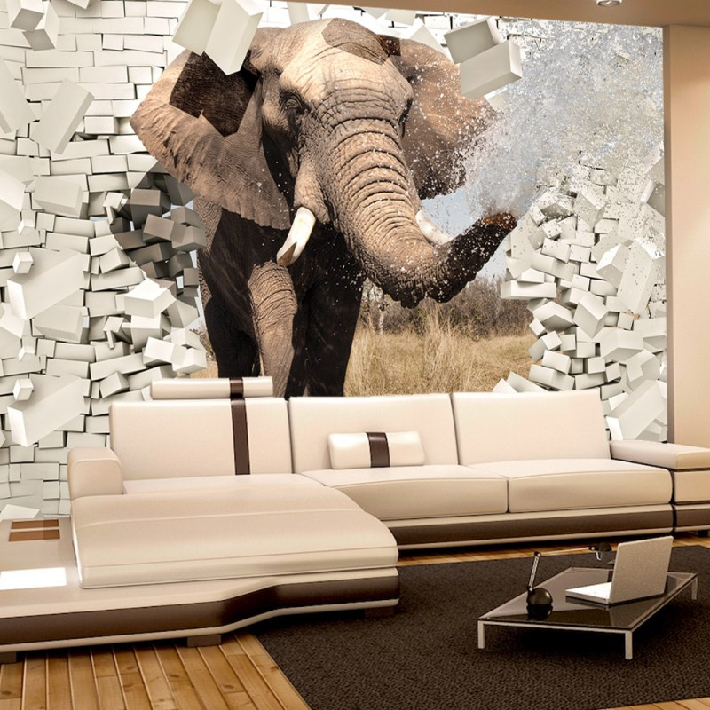 vlies fototapete no 2430 vliestapete liwwing r tiere. Black Bedroom Furniture Sets. Home Design Ideas