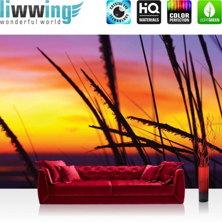 "Vlies Fototapete ""no. 2580"" | Sonnenaufgang Tapete Himmel Horizont Gräser orange | liwwing (R)"