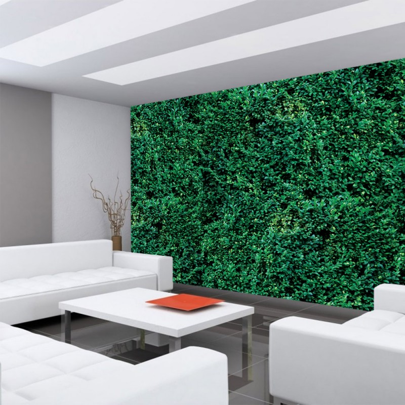 tapete dschungel tapete dschungel tapete dschungel pflanze gr n blau as creation 95898 1. Black Bedroom Furniture Sets. Home Design Ideas