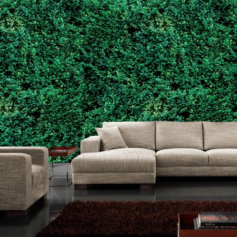 vlies fototapete no 2666 vliestapete liwwing r. Black Bedroom Furniture Sets. Home Design Ideas