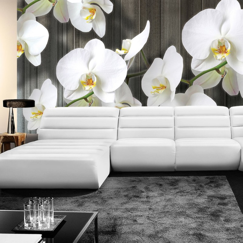 vlies fototapete no 2885 vliestapete liwwing r orchideen tapete blumen bl ten orchideen. Black Bedroom Furniture Sets. Home Design Ideas