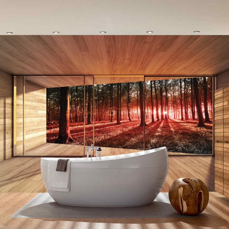 vlies fototapete no 3138 vliestapete liwwing r wald tapete raum holz wald b ume natur rot. Black Bedroom Furniture Sets. Home Design Ideas