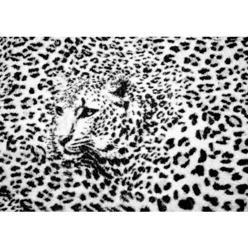 vlies fototapete no 2264 vliestapete liwwing r tiere tapete leopard muster natur kopf. Black Bedroom Furniture Sets. Home Design Ideas