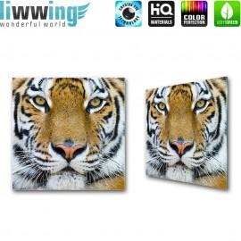 "Glasbild ""no. 0058"" | Tiere Glasbild Tiger Muster Natur braun | liwwing (R)"