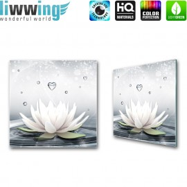 Glasbild ''no. 1413'' | Wellness Glasbild Lotusblüte Blume Wasser grau | liwwing (R)