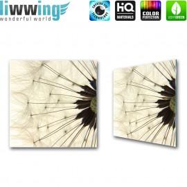 Glasbild ''no. 0204'' | Pflanzen Glasbild Pusteblume Fasern Blume sepia | liwwing (R)