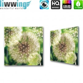 "Glasbild ""no. 0118""   Pflanzen Glasbild Pusteblume Fasern Blume grün   liwwing (R)"