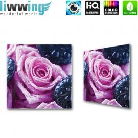 Glasbild ''no. 1608'' | Blumen Glasbild Rose Steine Wassertropfen lila | liwwing (R)