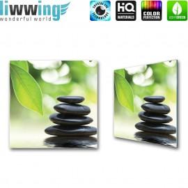 Glasbild ''no. 0468'' | Wellness Glasbild Steine Pflanzen Natur Wasser grün | liwwing (R)