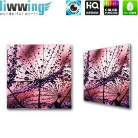 Glasbild ''no. 1818'' | Pflanzen Glasbild Pusteblume Fasern Blume Wasser rot | liwwing (R)