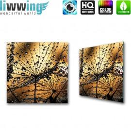 Glasbild ''no. 1316''   Pflanzen Glasbild Pusteblume Fasern Blume Wasser gelb   liwwing (R)