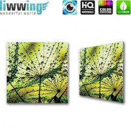 Glasbild ''no. 2095'' | Pflanzen Glasbild Pusteblume Fasern Blume Wasser grün | liwwing (R)