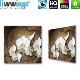 Glasbild ''no. 1819''   Orchideen Glasbild Blume Natur Holz Pflanze braun   liwwing (R)