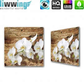 Glasbild ''no. 1323''   Orchideen Glasbild Blume Natur Holz Pflanze braun   liwwing (R)