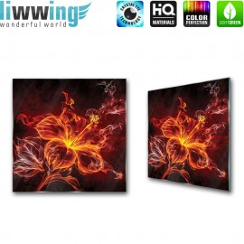 Glasbild ''no. 1829'' | Illustrationen Glasbild Blume Feuer Feuerblume orange | liwwing (R)