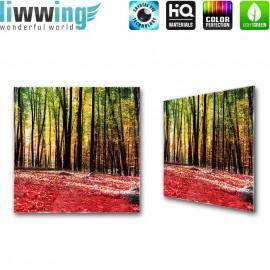 Glasbild ''no. 1968''   Wald Glasbild Bäume Natur Blätter Herbst bunt   liwwing (R)