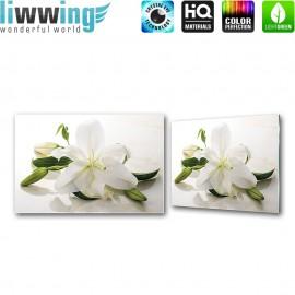 """Glasbild """"no. 0179""""   Orchideen Glasbild Orchidee Blüte Blätter Spiegelung weiß   liwwing (R)"""