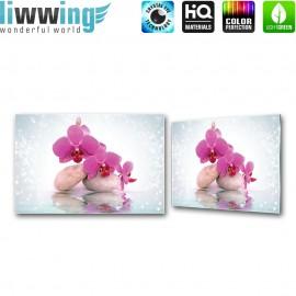 Glasbild ''no. 2817''   Orchideen Glasbild Wellness Blume Steine Wasser lila   liwwing (R)