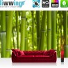 PREMIUM Fototapete - no. 71 | Dream of Bamboo | Bambus Wald Jungle Dschungel Natur Baum Gras