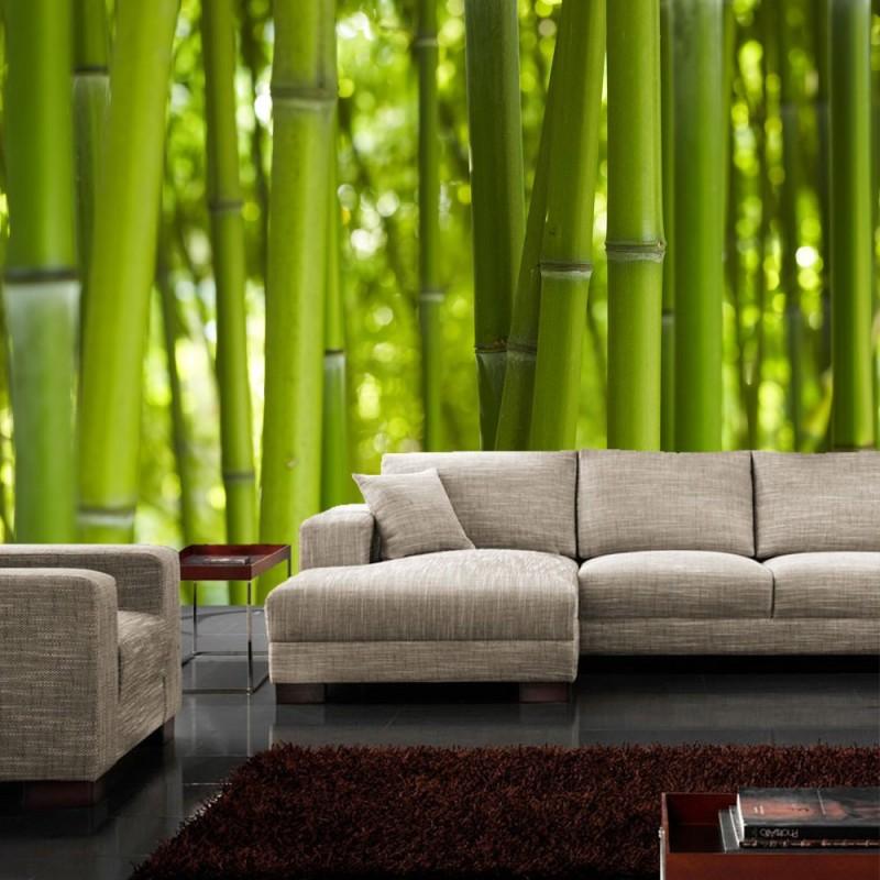 vlies fototapete dream of bamboo bambus tapete bambus. Black Bedroom Furniture Sets. Home Design Ideas