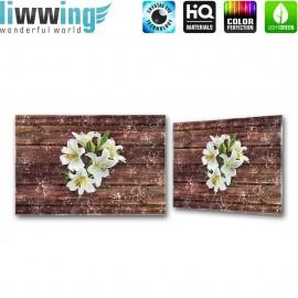 Glasbild ''no. 2054'' | Blumen Glasbild Blüte Holzwand Pflanzen Illustration braun | liwwing (R)