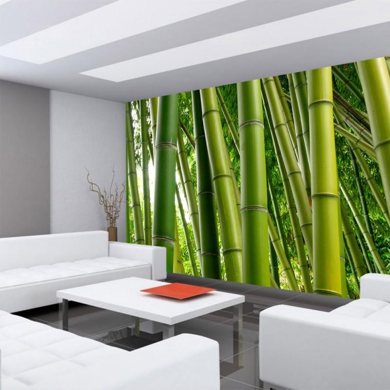 vlies fototapete paradies of bamboo bambus tapete wald