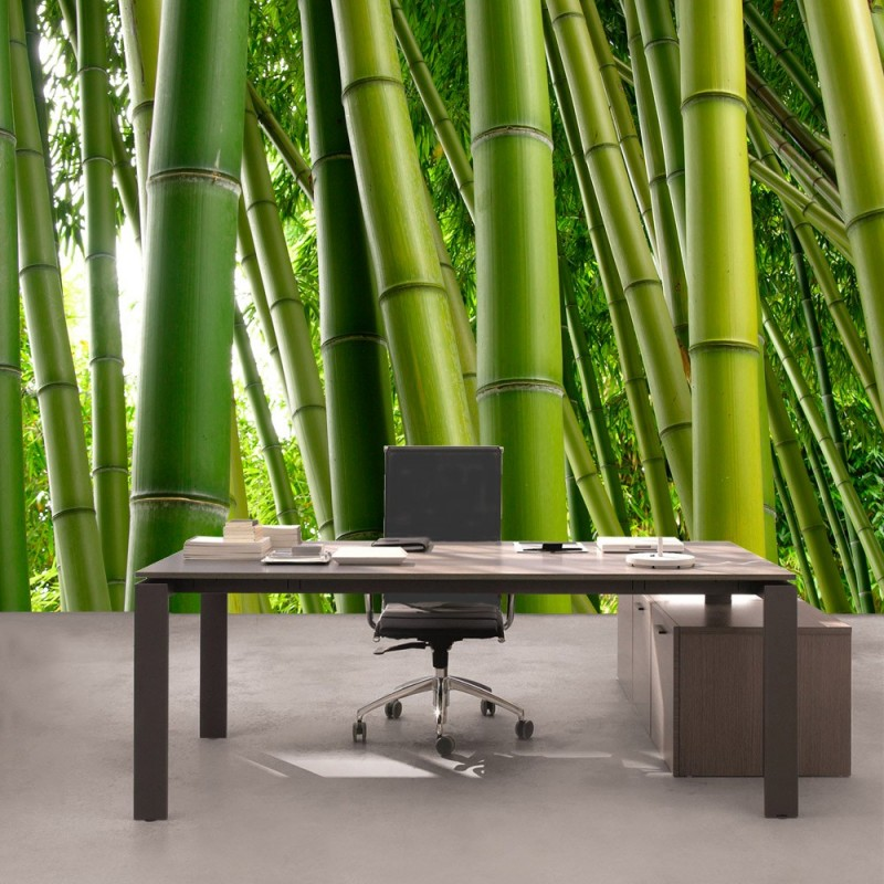 vlies fototapete paradies of bamboo bambus tapete wald. Black Bedroom Furniture Sets. Home Design Ideas