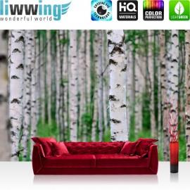 """Vlies Fototapete """"Birch Forest II""""   Wald Tapete Birkenwald 3D perspektive Birke Stämme grün"""